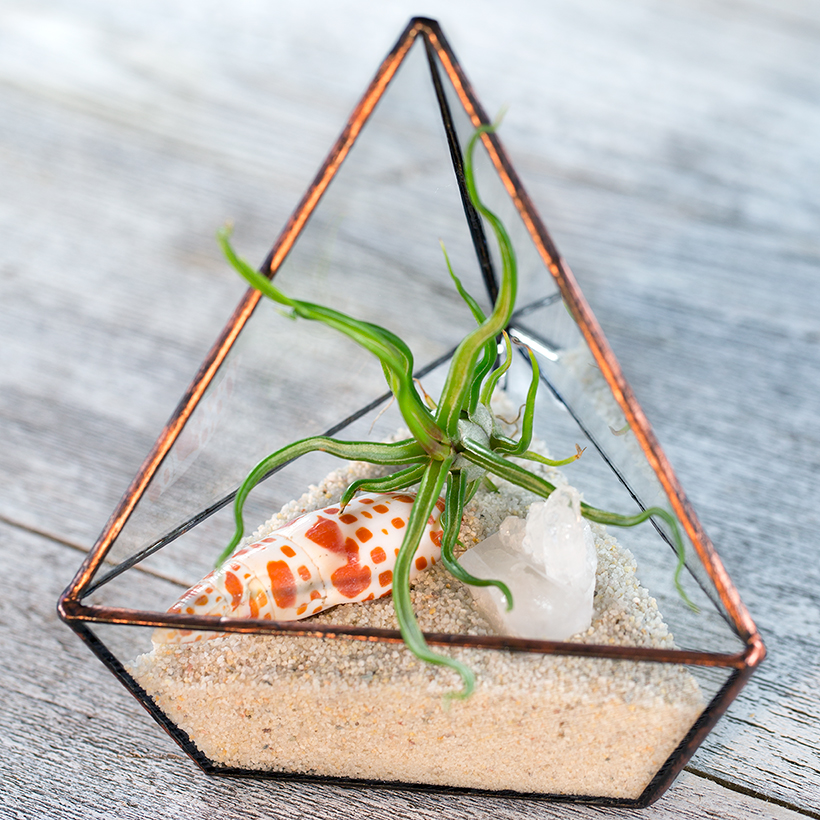 Triangle Terrarium (Copper, Small)