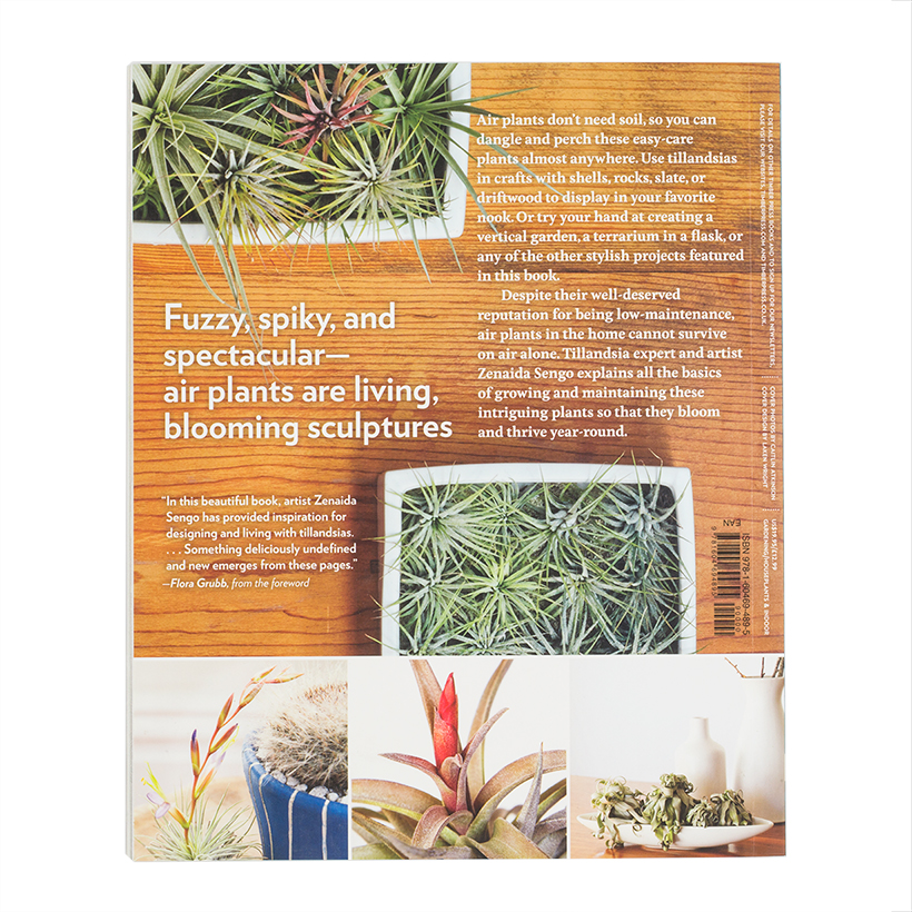 Air Plants: The Curious World of Tillandsias